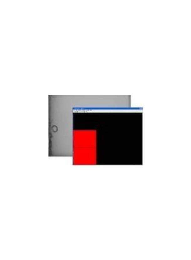 ディスプレイ /LCD検査